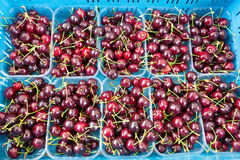 Fruit trays with sweet red cherries Stock Image