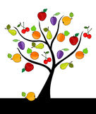 Fruit tree. Abstract fruit tree with apples, cherries, plums, quinces and apricots Stock Photography