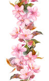Fruit tree - apple or cherry - flowers. Seamless floral strip border. Watercolor painted banner Stock Photography