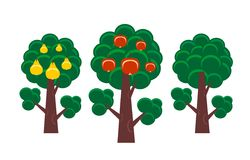 Fruit tree Royalty Free Stock Photo