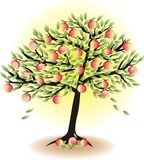 Fruit tree with lapples Stock Photography