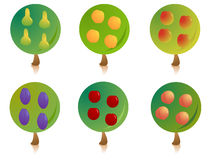 Fruit tree signs. Set of garden tree signs with different ripe fruits, isolated on white background Stock Image