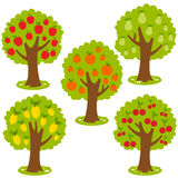 Fruit trees. Fruit orchard trees vector set: Apple tree, Pear tree, orange tree, lemon tree and cherry tree Stock Photography