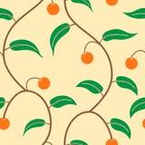 Fruit trees Stock Photo