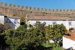 Fruit trees in the Town of Obidos, Portugal Stock Photo