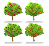 Fruit trees Royalty Free Stock Images
