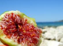 Fruit tropical Photo libre de droits