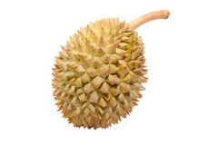 Fruit tropical asiatique connu sous le nom de durian Photos libres de droits