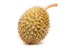 Fruit tropical asiatique connu sous le nom de durian Image stock