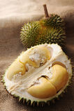 Fruit tropical de durian Image stock