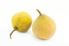 Fruit tropical de Santol sur le blanc Images libres de droits