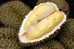 Fruit, tropical, Durian, King of tropical fruit. Durian, King of tropical fruit, Close up of peeled durian royalty free stock images