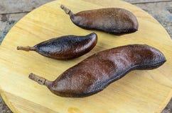 Fruit tropical Jatoba Photographie stock