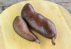 Fruit tropical Jatoba Image stock