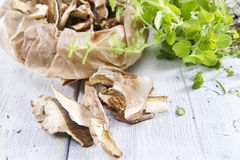 Fruit of the underbrush, dried mushrooms. Royalty Free Stock Images