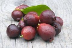 Fruit van Cattley-guave of Peruviaanse guave (Psidium littorale susp stock afbeeldingen