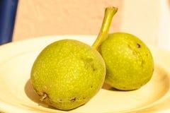 Fruit van de okkernoot Royalty-vrije Stock Afbeelding