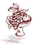 Fruit in a Vase. Graphic illustration - fruit and grapes in a vase vector illustration