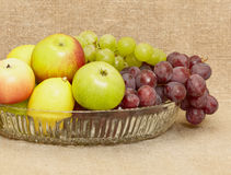 Fruit in vase - lemons, apples, grapes Stock Image