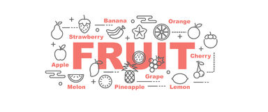 Fruit vector banner Stock Photography