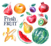 Fruit vector logo design template. fresh food or Royalty Free Stock Photo