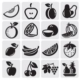 Fruit vector set. Black icon fruit vector set royalty free illustration