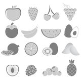 Fruit vector set. Gray fruit vector set on white background vector illustration