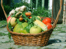 Fruit and vegetable. In the basket royalty free stock photography