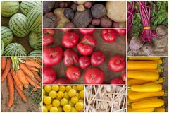Fruit and Vegetable Collage Royalty Free Stock Photography