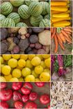 Fruit and Vegetable Collage Royalty Free Stock Photos