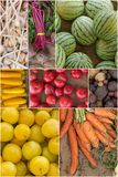 Fruit and Vegetable Collage Stock Image