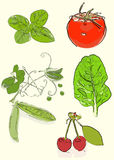 Fruit and vegetable collection Royalty Free Stock Image