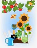 Fruit and vegetable garden Stock Photo