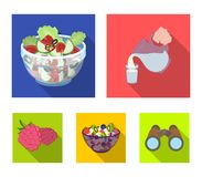 Fruit, vegetable salad and other types of food. Food set collection icons in flat style vector symbol stock illustration.  Royalty Free Stock Image