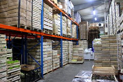 Production in warehouse shelves Royalty Free Stock Photography