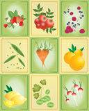 Fruit and vegetable tiles Stock Photography