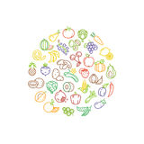 Fruit and vegetable vector logo with line icons. Fruit food and icon vegetable, organic healthy fruit illustration Stock Photography