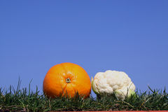Fruit and vegetables. Orang and mini cauliflower. Fruit and vegetables  in grass against  a bright blue sky Stock Photography