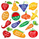 Fruit and vegetables color silhouettes, logo for food store packaging. Vegetables eggplant potatoes and cucumber, collection of label vegetables illustration Royalty Free Stock Photos