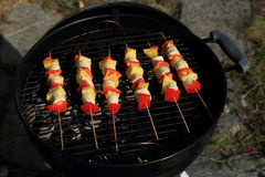 Fruit and vegetables on the grill Royalty Free Stock Image