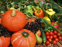 Fruit, Vegetables and Herbs Royalty Free Stock Image