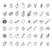 Fruit and Vegetables icon set. vector illustration Stock Photography