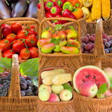 Fruit and vegetables. Stock Photography