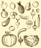 Fruit and vegetables in retro style Stock Images