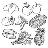 Fruit and Vegetables Set Royalty Free Stock Photo