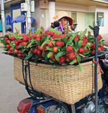 Fruit Vendor in Cambodia Stock Images