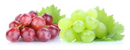 Fruit vert rouge de fruits frais de raisins Image libre de droits