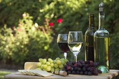 Fruit of the Vine. Red and white grapes, red and white wine bottles, cheese and crackers served together for a picnic in the garden Stock Photos