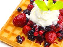 Fruit wafel stock image