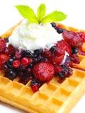 Fruit wafel Stock Images